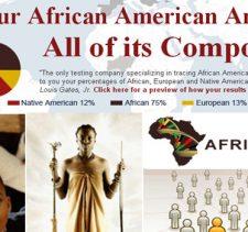 africandna.com review