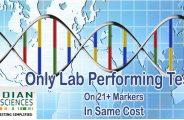 inb dna testing reviews