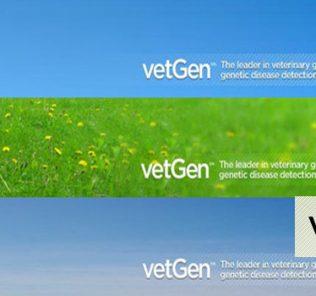 vetgen.com review