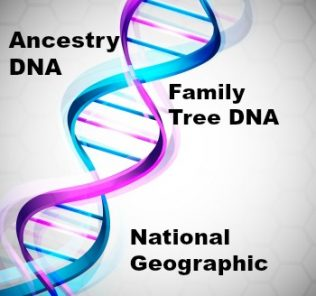 AncestryDNA FamilytreeDNA National Geographic