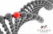 etalon diagnostics horse dna testing
